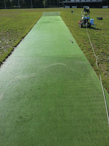 Cricket Pitch Cleaning
